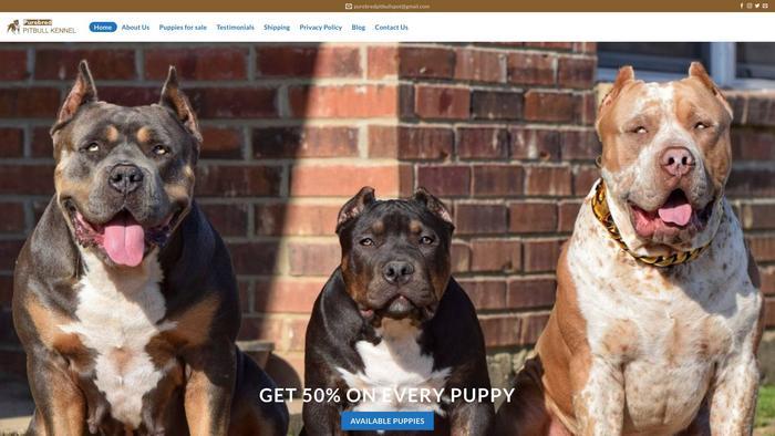 Purebredpitbullkennel.com - Pit Bull Puppy Scam Review