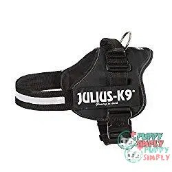 Julius-K9 162P2 K9 PowerHarness