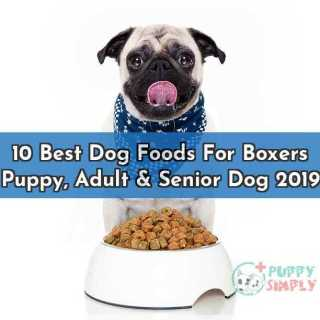 10 Best Dog Foods For Boxers Puppy Adult Senior Dog 2019
