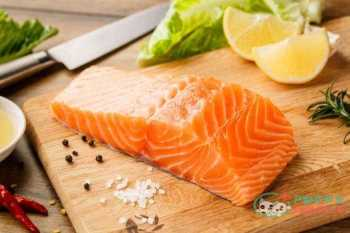Raw salmon steak Fish meats for dogs