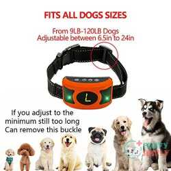 Petown Newest Version Flashing Lights Bark Collar 1