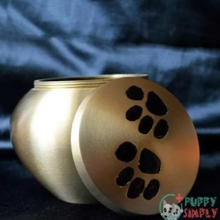 how much to cremate a dog cost