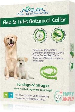 Arava Flea & Tick Prevention