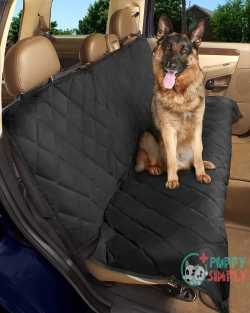 Epica Luxury Deluxe Pet Car