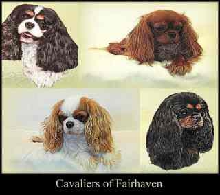Cavaliers of Fairhaven