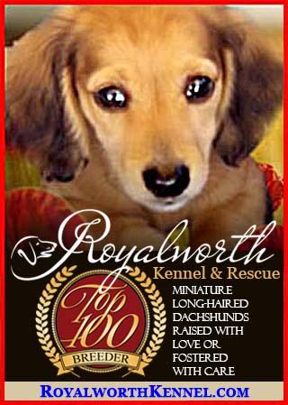 Royalworth Kennel & Rescue