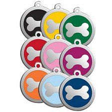 colorful dog tags