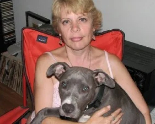 pit bull and woman