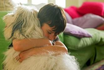Little boy hugging his dog