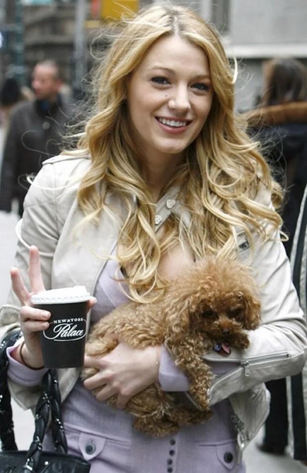 celebrities_dogs_11