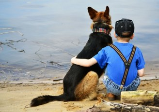 A boy and his dog at the beach