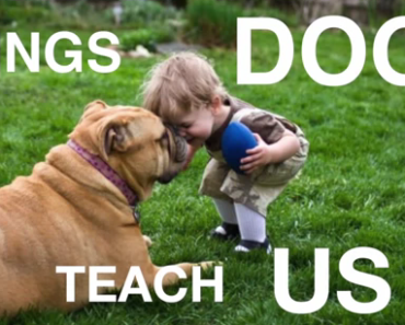 Dog Video of the Day:  The Things that Dogs Teach Us
