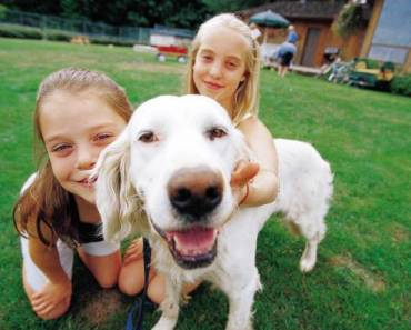 Dogs Can Improve the Mental and Physical Health of Kids
