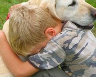 Do Dogs Feel Empathy?