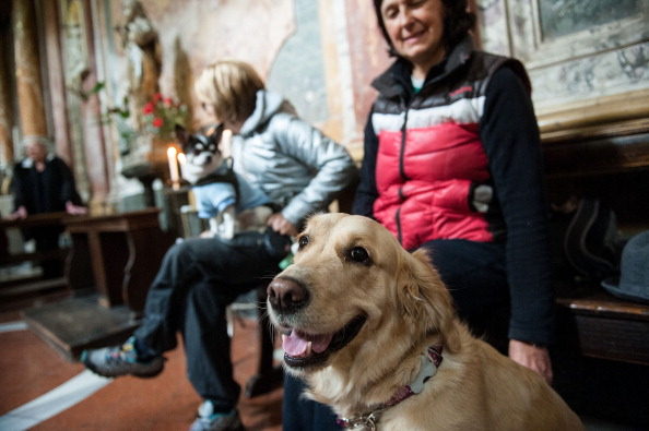 Annual Blessing Of Animals In Sant'Eusebio Church