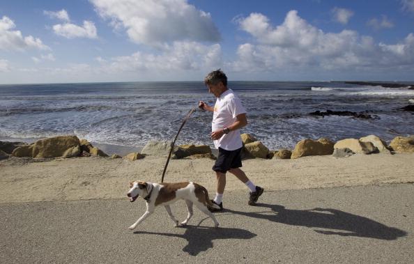 Earthquake In Japan Prompts Tsunami Warning For California Coast
