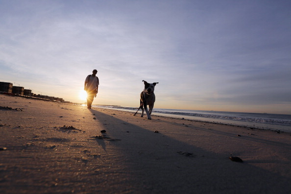 Rockaways Beaches A New Draw For New Yorkers