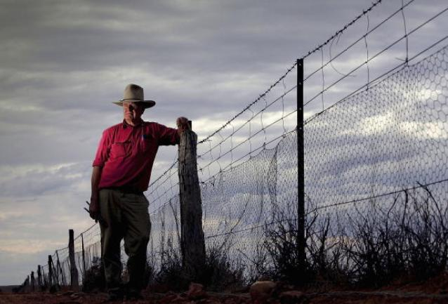 Australian Dog Fence - The Longest Fence In The World