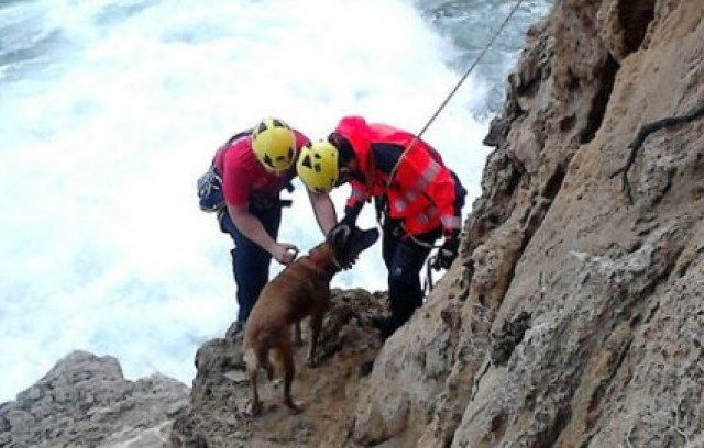 mallorca-dog-cliff