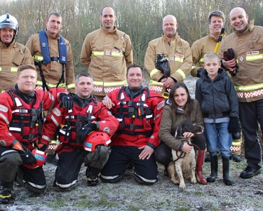 Nine Dog Rescuers