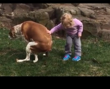 Too Funny! Little Girl Congratulates Her Dog On Pooping