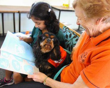 Four-Legged Teachers Help Improve Primary School Students Literacy Skills