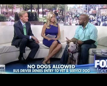 Purple Heart Veteran with PTSD Denied Bus Ride over Pit Bull Service Dog