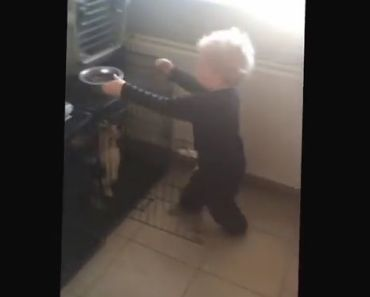 Watch How Happy This Boy is When He Gets to Feed His Corgis