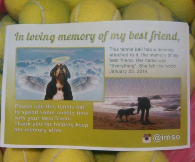 tennis ball dog gift