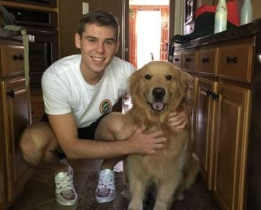 Mom Makes Cardboard Cutout of Golden Retriever for College-Bound Son