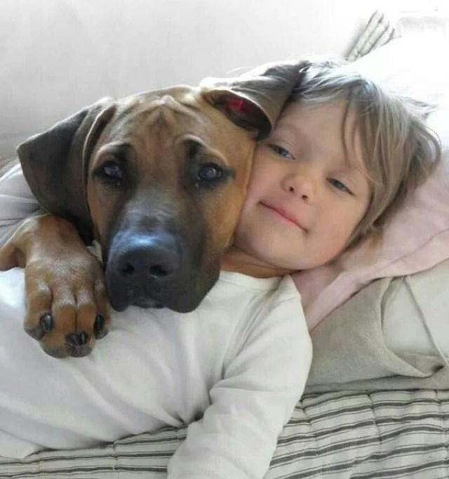 Dogs Love Us 9