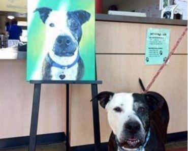 Man Paints Beautiful Portrait of Unwanted Dog
