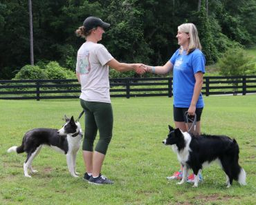 Tips on Passing the Canine Good Citizen Test
