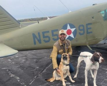 Pandemic Closed His Restaurant: Owner Flies to Save Dogs