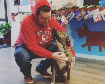3-Legged Dog Reunited with Owner Almost a Year After Going Missing