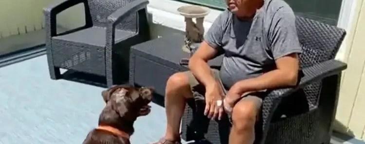Florida Man Wrestles Alligator to Save His Dog