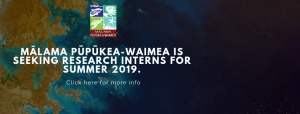 MPW Seeking Summer Research Graduate or Undergraduate Interns