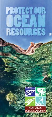 MPW brochure cover