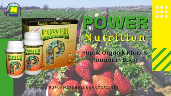 Jual power nutrition nasa khusus buah