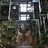メキシコシティの図書館の恐竜の骨の写真