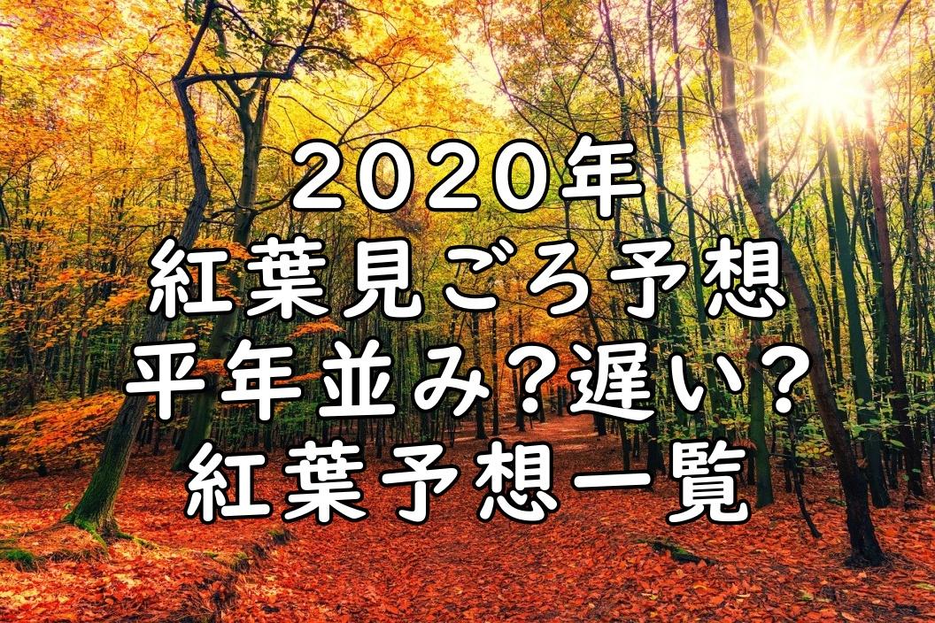 2020紅葉画像