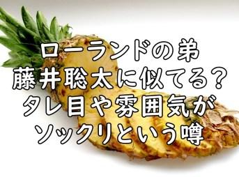 ローランド 弟 藤井聡太 画像
