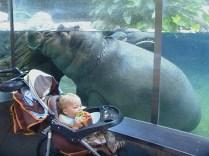 Eli & Hippo