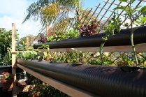 PVC Pipe Hyroponic Growing System