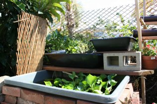 new-aquaponic-systems-138