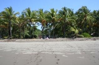 playa-bejuco-4