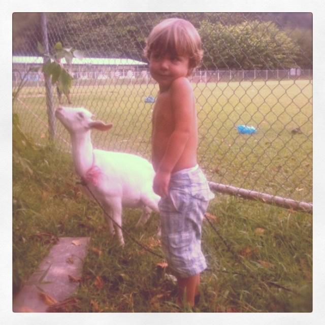 Santa Teresa Goat