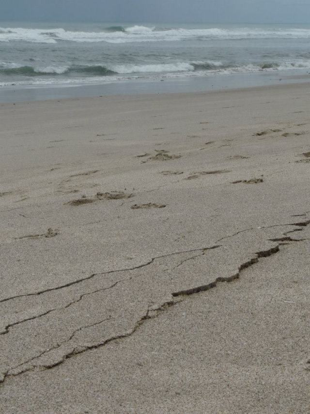 cracked sand on beach