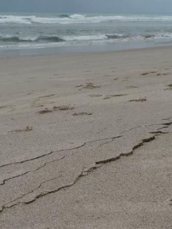 cracked sand on beach