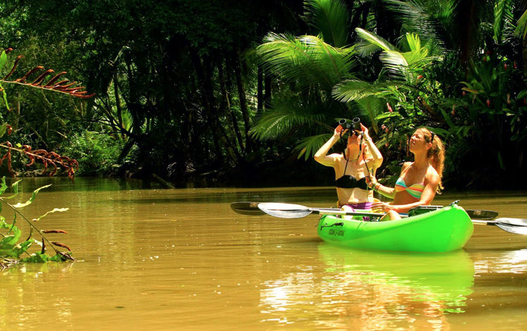 Discount: Kayaking Tour And Rainforest Hike (Puerto Viejo)